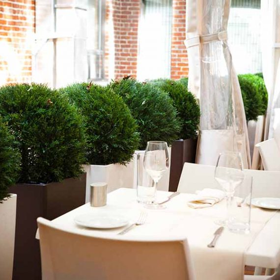 Restaurant Fino - Montreal - OPUS DESIGN