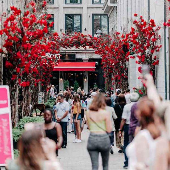 SDC Vieux-Montréal - OPUS DESIGN